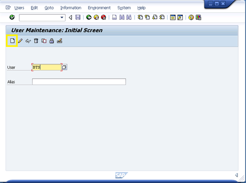 How to create your own Mini SAP Part 3: Configure the SAP